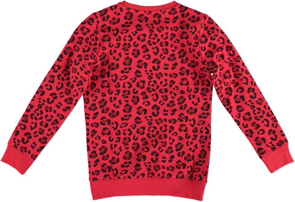 Cars Sweater RELINDE